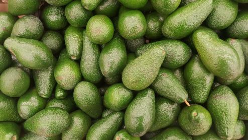 avocado-2351191_1280